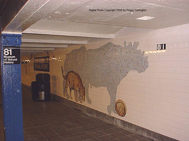 (71k, 640x480)<br><b>Country:</b> United States<br><b>City:</b> New York<br><b>System:</b> New York City Transit<br><b>Line:</b> IND 8th Avenue Line<br><b>Location:</b> 81st Street/Museum of Natural History <br><b>Photo by:</b> Peggy Darlington<br><b>Date:</b> 2000<br><b>Artwork:</b> <i>For Want of a Nail</i>,  MTA Arts for Transit (1999).<br><b>Viewed (this week/total):</b> 0 / 7378