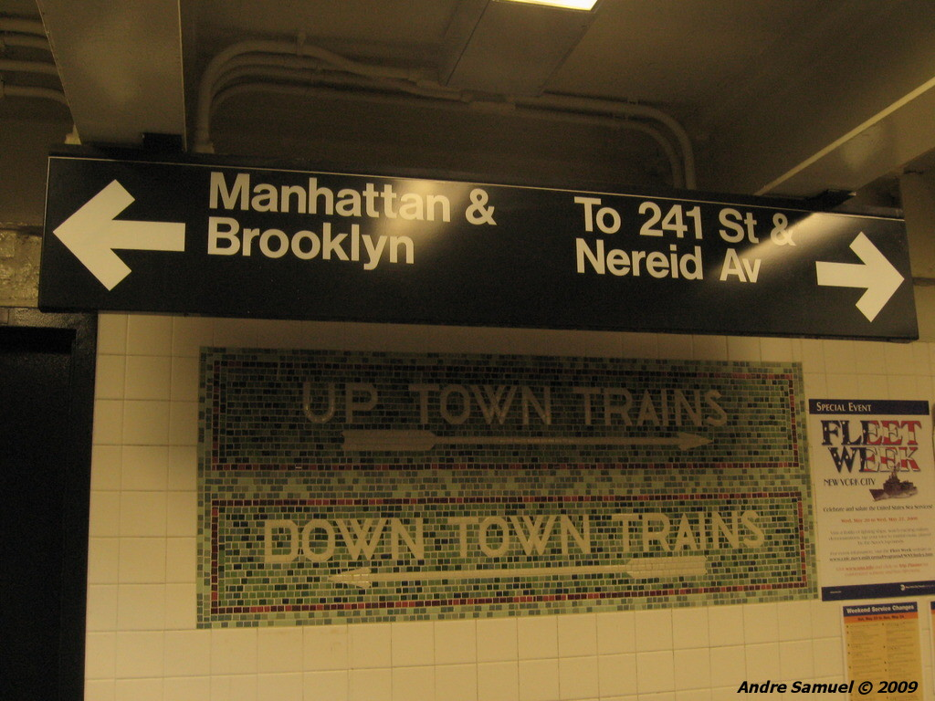 (215k, 1024x768)<br><b>Country:</b> United States<br><b>City:</b> New York<br><b>System:</b> New York City Transit<br><b>Line:</b> IRT White Plains Road Line<br><b>Location:</b> Bronx Park East <br><b>Photo by:</b> Andre Samuel<br><b>Date:</b> 5/25/2009<br><b>Notes:</b> Mosaics in mezzanine.<br><b>Viewed (this week/total):</b> 0 / 1055