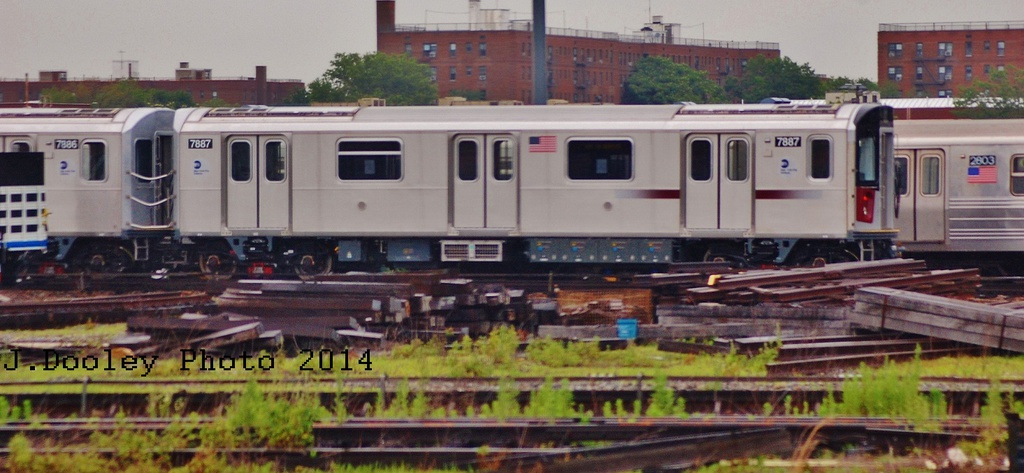 (252k, 1024x473)<br><b>Country:</b> United States<br><b>City:</b> New York<br><b>System:</b> New York City Transit<br><b>Location:</b> Coney Island Yard<br><b>Car:</b> R-188 (Kawasaki, 2012-) 7887 <br><b>Photo by:</b> John Dooley<br><b>Date:</b> 6/19/2014<br><b>Viewed (this week/total):</b> 4 / 612