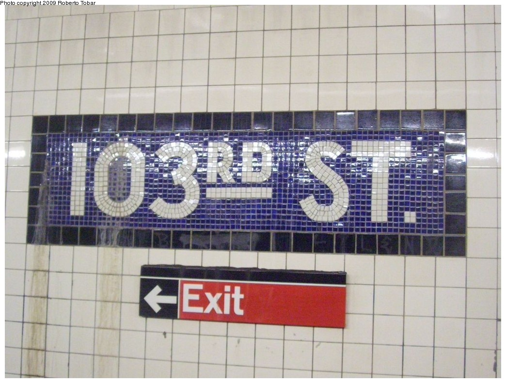 (206k, 1044x791)<br><b>Country:</b> United States<br><b>City:</b> New York<br><b>System:</b> New York City Transit<br><b>Line:</b> IND 8th Avenue Line<br><b>Location:</b> 103rd Street <br><b>Photo by:</b> Roberto C. Tobar<br><b>Date:</b> 1/30/2009<br><b>Notes:</b> Wall tile<br><b>Viewed (this week/total):</b> 3 / 531