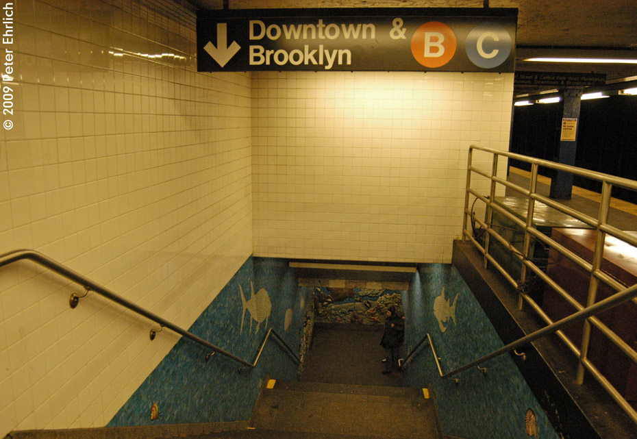 (209k, 930x641)<br><b>Country:</b> United States<br><b>City:</b> New York<br><b>System:</b> New York City Transit<br><b>Line:</b> IND 8th Avenue Line<br><b>Location:</b> 81st Street/Museum of Natural History <br><b>Photo by:</b> Peter Ehrlich<br><b>Date:</b> 3/4/2009<br><b>Notes:</b> Stairway from upper to lower level.<br><b>Viewed (this week/total):</b> 0 / 6976