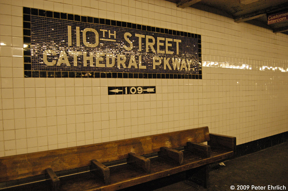 (222k, 930x618)<br><b>Country:</b> United States<br><b>City:</b> New York<br><b>System:</b> New York City Transit<br><b>Line:</b> IND 8th Avenue Line<br><b>Location:</b> 110th Street/Cathedral Parkway <br><b>Photo by:</b> Peter Ehrlich<br><b>Date:</b> 3/4/2009<br><b>Notes:</b> Tilework.<br><b>Viewed (this week/total):</b> 11 / 676